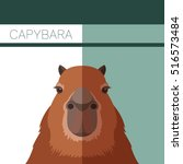 Flat Postcard With Capybara