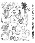 set of vegetables. fresh food.... | Shutterstock .eps vector #516590479