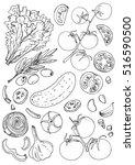 set of vegetables. fresh food.... | Shutterstock .eps vector #516590500
