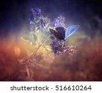 butterfly | Shutterstock . vector #516610264