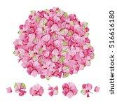 pink watercolor hydrangea... | Shutterstock . vector #516616180