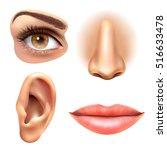 human face parts 4 sense organs ... | Shutterstock .eps vector #516633478