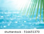 green nature palm leaf on blur... | Shutterstock . vector #516651370