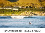 whale flicks tail into air for...   Shutterstock . vector #516757030