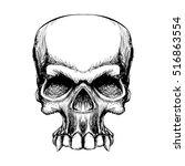 hand draw human skull halloween ... | Shutterstock .eps vector #516863554