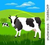 vector illustration.  white cow ... | Shutterstock .eps vector #516886249