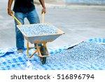 worker pushing a wheelbarrow...   Shutterstock . vector #516896794