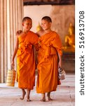 two novices walking and talking ... | Shutterstock . vector #516913708