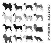 set of dog breeds | Shutterstock . vector #516916480