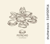 background with pistachio. hand ... | Shutterstock .eps vector #516930916
