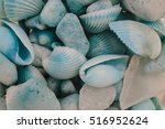 Macro View Of Seashells....
