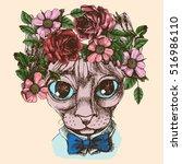 sphinx cat portrait with floral ... | Shutterstock .eps vector #516986110