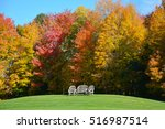 a park bench surrounded by... | Shutterstock . vector #516987514