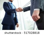 handshake of partners | Shutterstock . vector #517028818