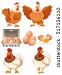 chickens and eggs illustration | Shutterstock .eps vector #517136110
