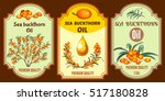 collection of oil sea buckthorn ... | Shutterstock .eps vector #517180828