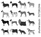 set of dog breeds | Shutterstock . vector #517281346