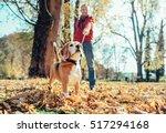 man walks with dog in autumn... | Shutterstock . vector #517294168