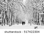 Black And White Winter City...