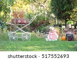 the baby sits in a meadow | Shutterstock . vector #517552693