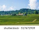 fields in swiss village in... | Shutterstock . vector #517672939