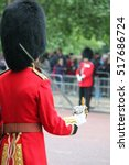 Royal Guard Foot Soldier ...