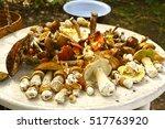 White Mushroom Boletus Eduli....