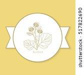 burdock medicine plant  yellow... | Shutterstock .eps vector #517822690