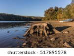 tree stump at the lake of... | Shutterstock . vector #517895578