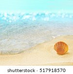 Beach With Shell.