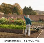 Male Gardener Leaning On A...