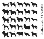Stock vector set of silhouette dogs breeds 517941340