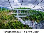 sochi  russia   august 15  2016 ... | Shutterstock . vector #517952584