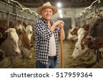 Mature Farmer Posing In A...
