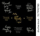 isolated hand drawn lettering...   Shutterstock . vector #517990780