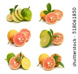 citrus lime fruit isolated on... | Shutterstock . vector #518061850