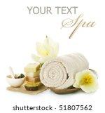 spa setting over white   Shutterstock . vector #51807562