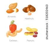 different nuts vector set. | Shutterstock .eps vector #518202463