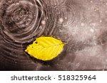 bright colourful autumn leaf... | Shutterstock . vector #518325964
