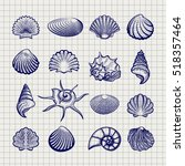 Ball Pen Sketch Sea Shells On...