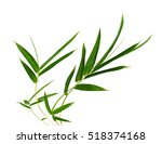 bamboo leaves on a white... | Shutterstock . vector #518374168