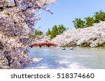 cherry blossoms at the hirosaki ... | Shutterstock . vector #518374660