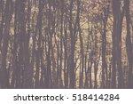 woodland scene with autumn... | Shutterstock . vector #518414284