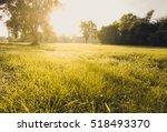 natural of life | Shutterstock . vector #518493370