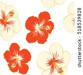 aloha hawaii  luau party...
