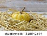 Orange Pumpkin In Straw