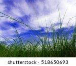 Freshness Vetiver Grass Blade...