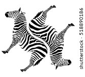 black zebras on white background