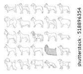 breed dogs linear style and big ... | Shutterstock .eps vector #518896354