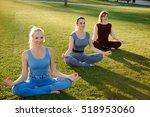 a group of adult women... | Shutterstock . vector #518953060